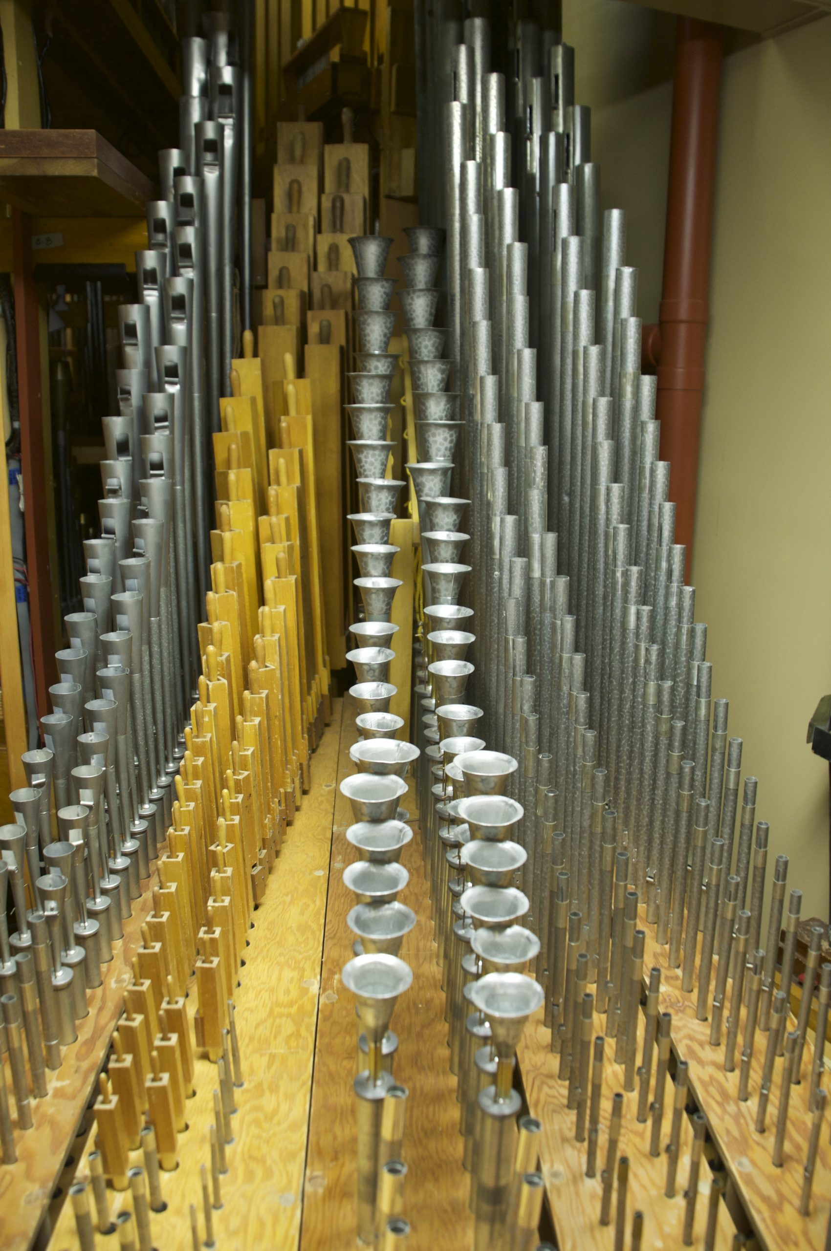 Some of the 2500 pipes that play the theater organ's many sounds