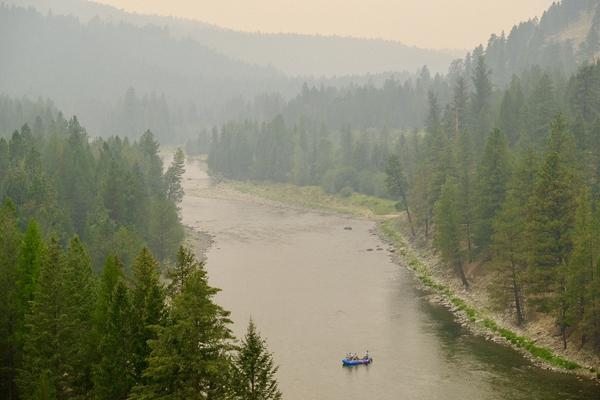 Fire ecologists on both sides of the border say more logging isn't a 'silver bullet' solution to wildfires.