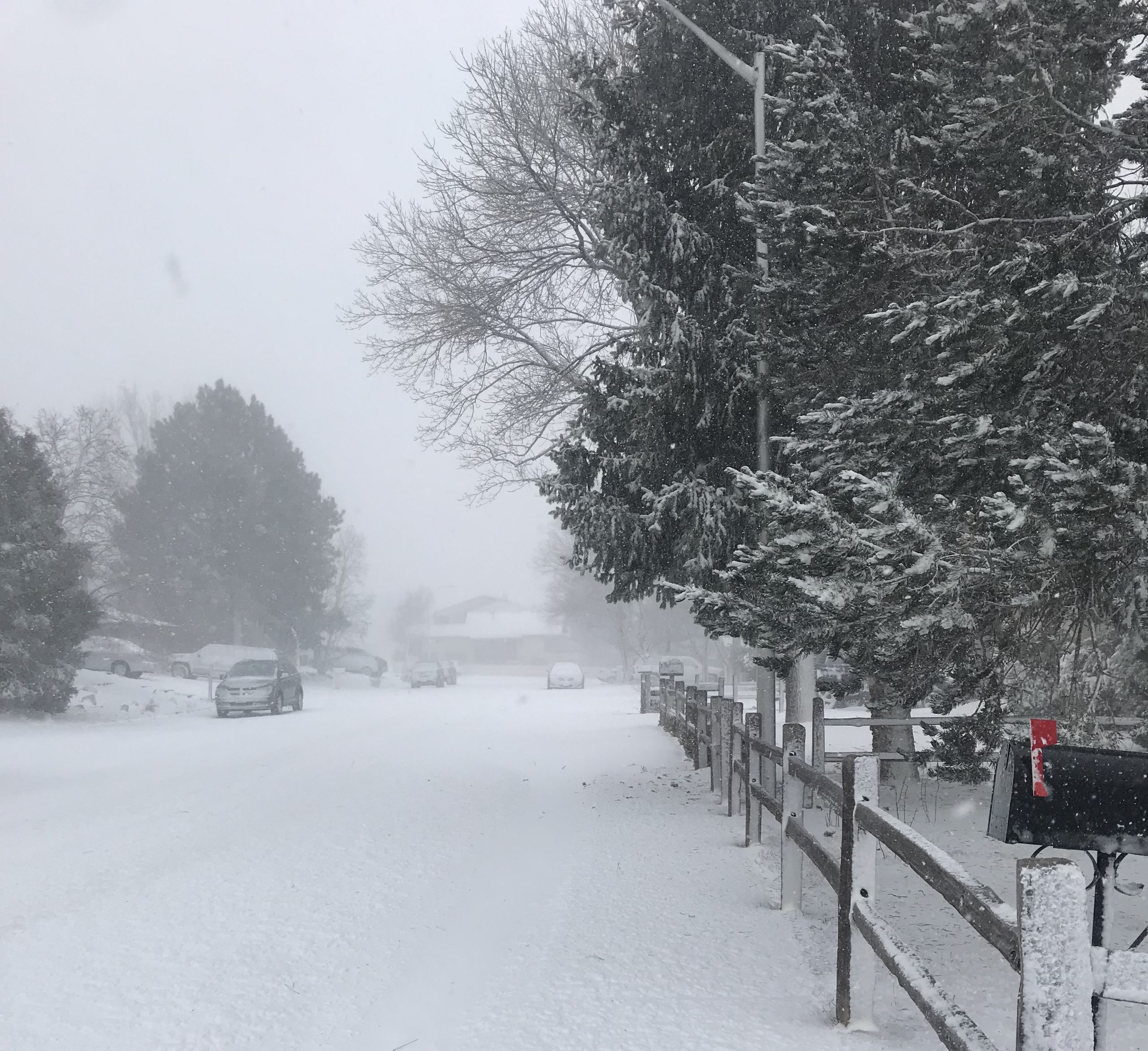 Snow blanketed a residential street on the east side of Colorado Springs by mid-afternoon. Strong winds along with heavy snow led to stranded motorists and road closures across the city.