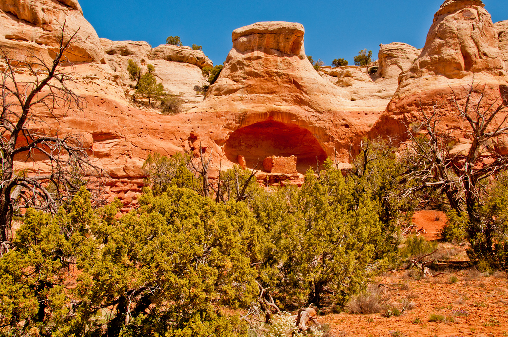 """<p class=""""normal"""" itemprop=""""name"""">The Saddle Horn Ruin is in a cliff alcove along Sand Canyon Trail in Canyons of the Ancients National Monumentnear Cortez, Colorado.</p>"""