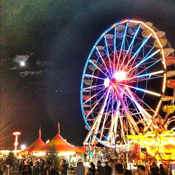 Photo: Colorado State Fair