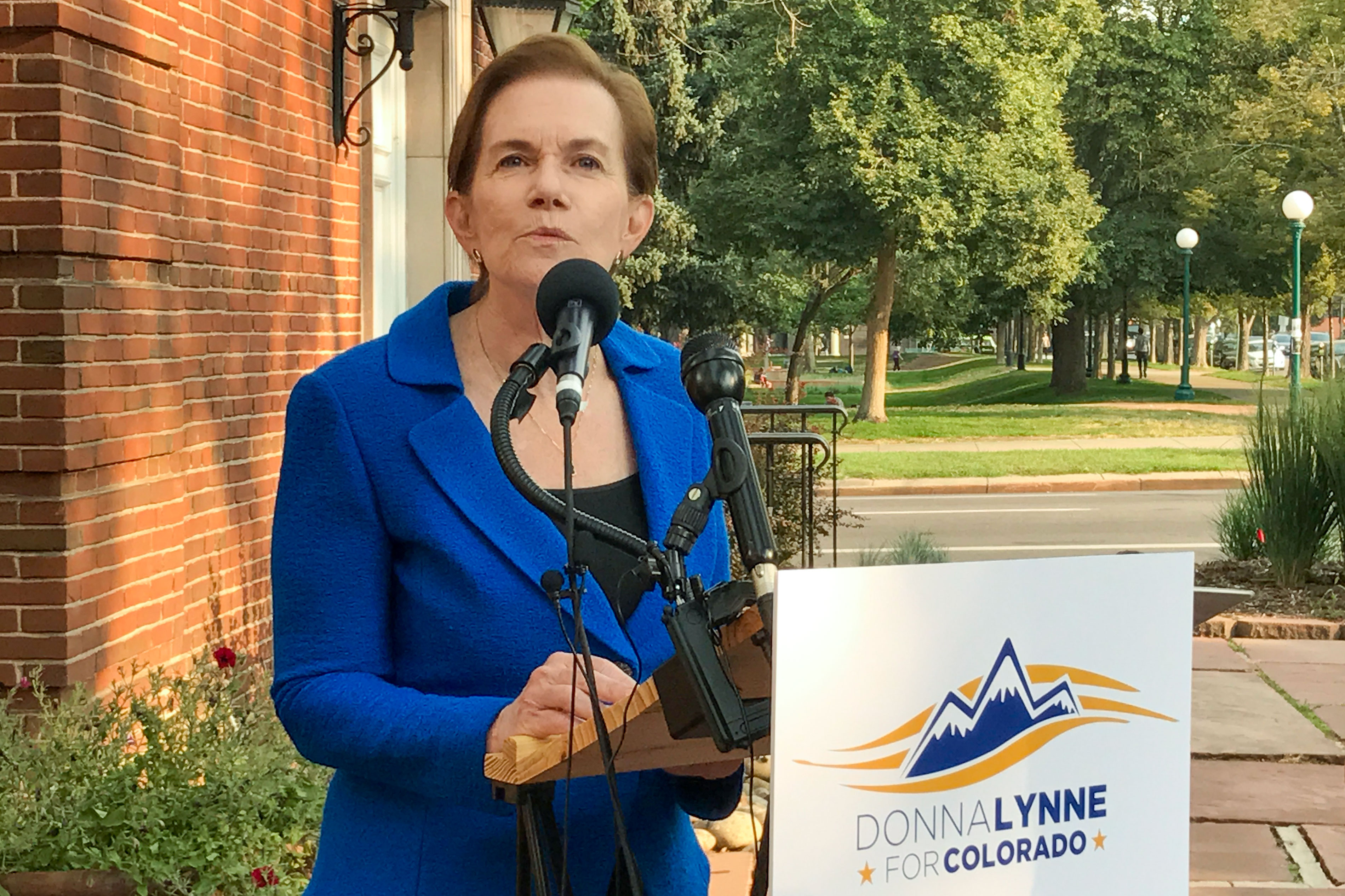 <p>Colorado Lt. Gov. Donna Lynne announces that she's in for the 2018 Governor's Race. She still has to face a crowded Democratic primary field for the chance to succeedthe current governor, John Hickenlooper.</p>