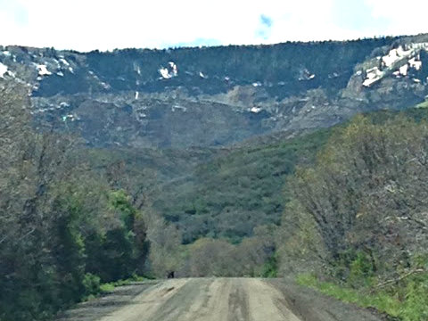 Photo: Mesa County Landslide from road