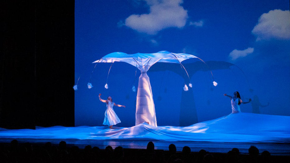 Photo: Momix at Newman Center 2