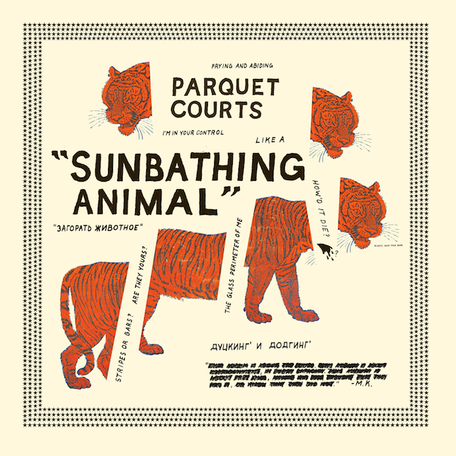 photo: Parquet Courts 'Sunbathing Animal' album cover