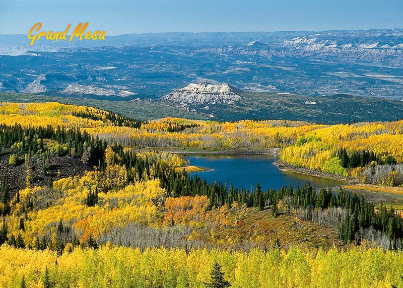 <p>Grand Mesa, Colo. Fall Colors.</p>