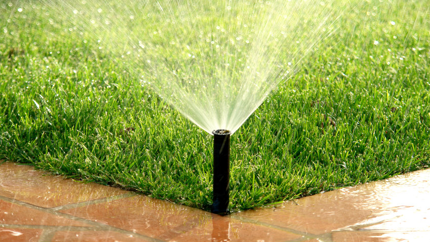 Photo: Lawn water sprinkler iStock