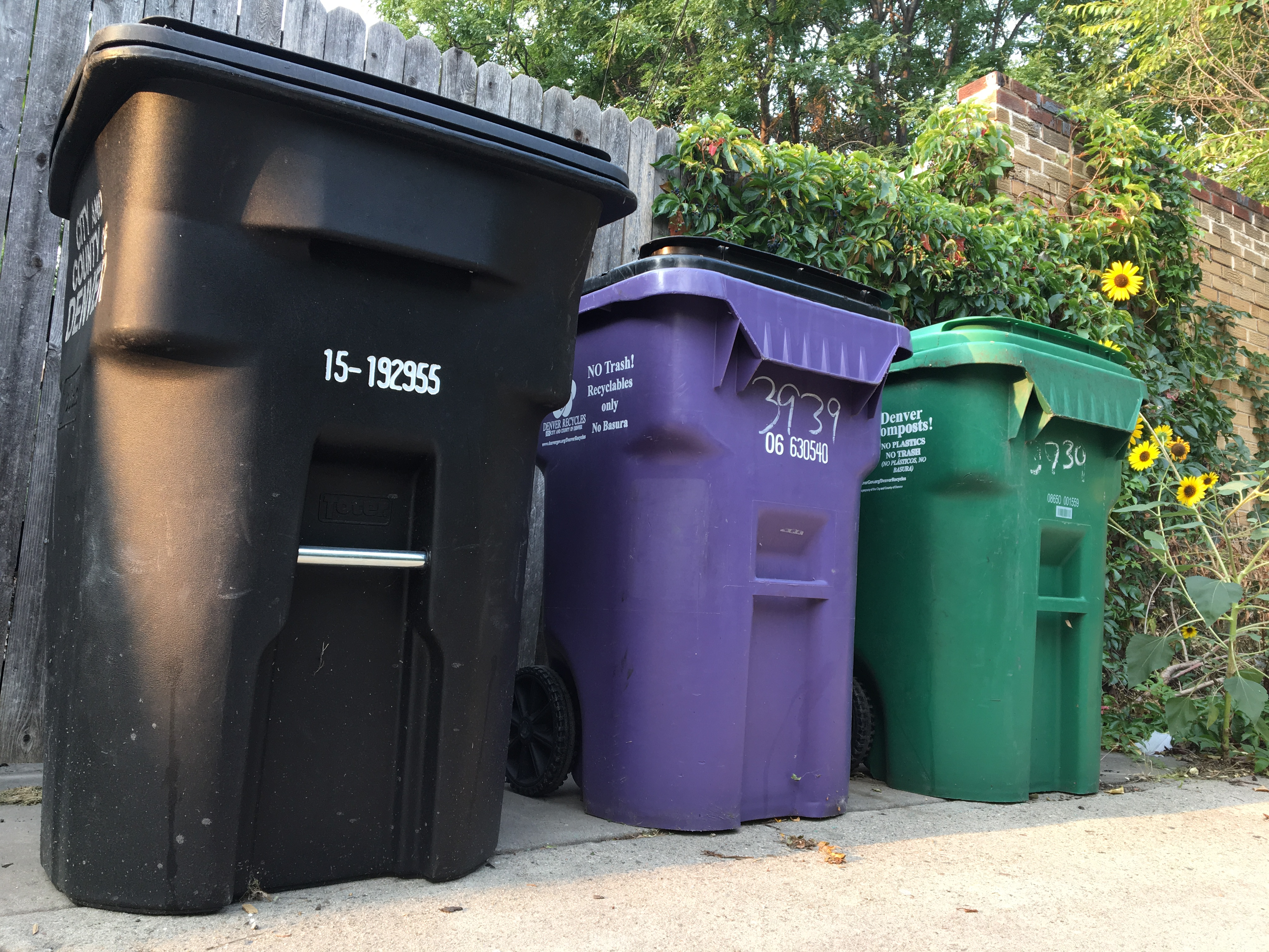 <p>Trash, recycling, and compost bins await pickup in a Denver alley.</p>