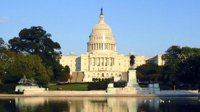 <p>The U.S. Capitol, Washington, D.C.</p>