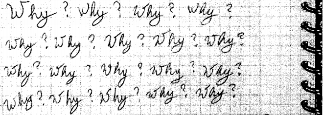 Photo: Holmes notebook Why? repeated