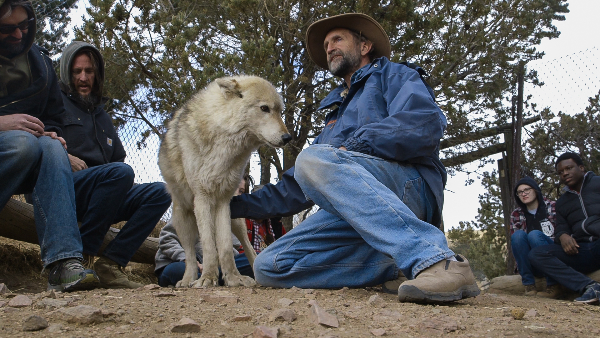 Photo: Mission Wolf Sanctuary 1