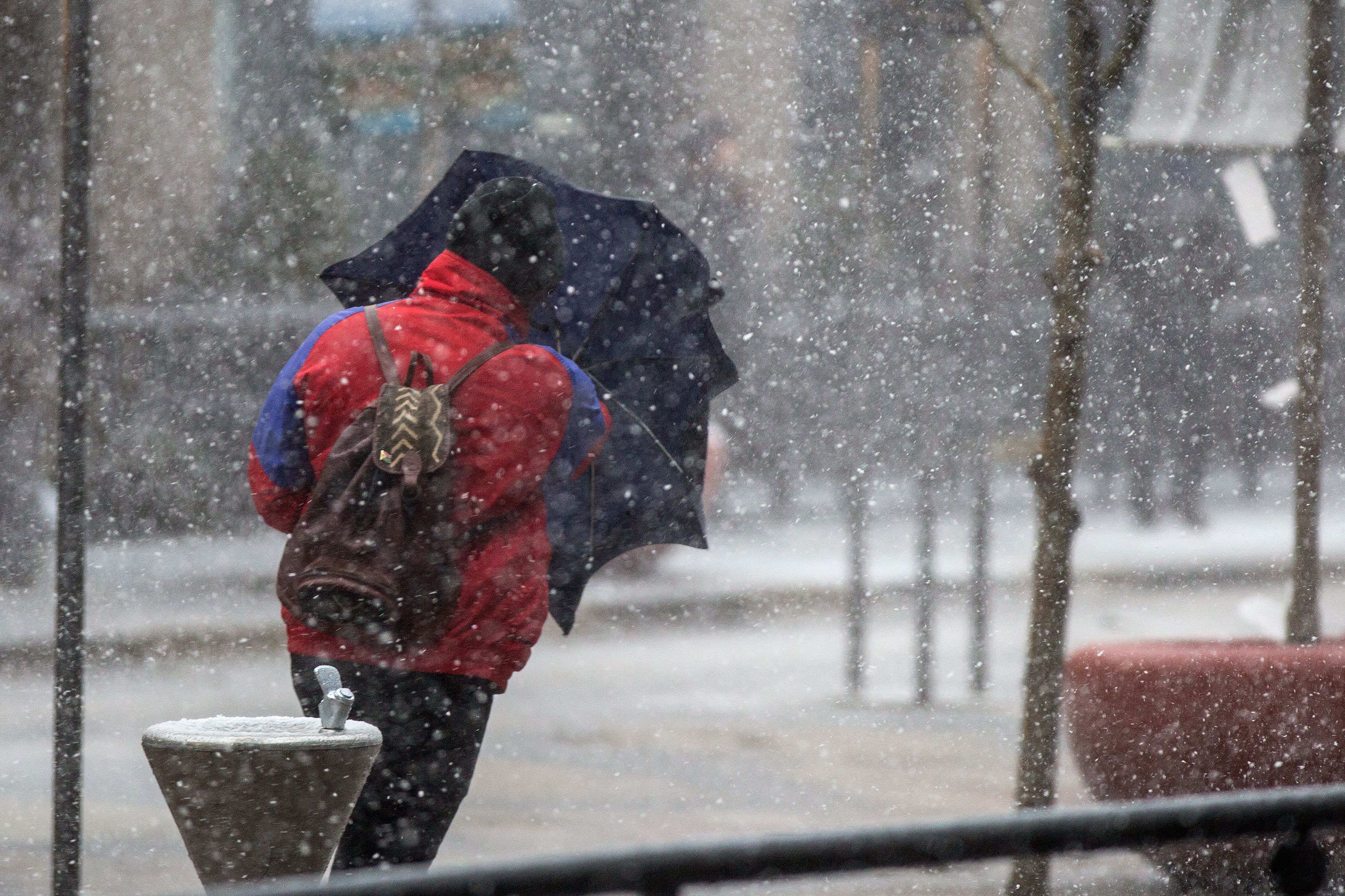 Photo: Bomb Cyclone 6 | Downtown Denver, Umbrella Shield 2 - HVD
