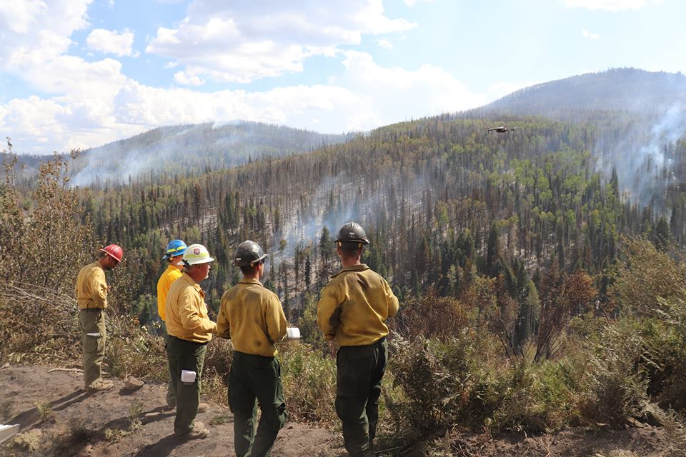 Wildfire research