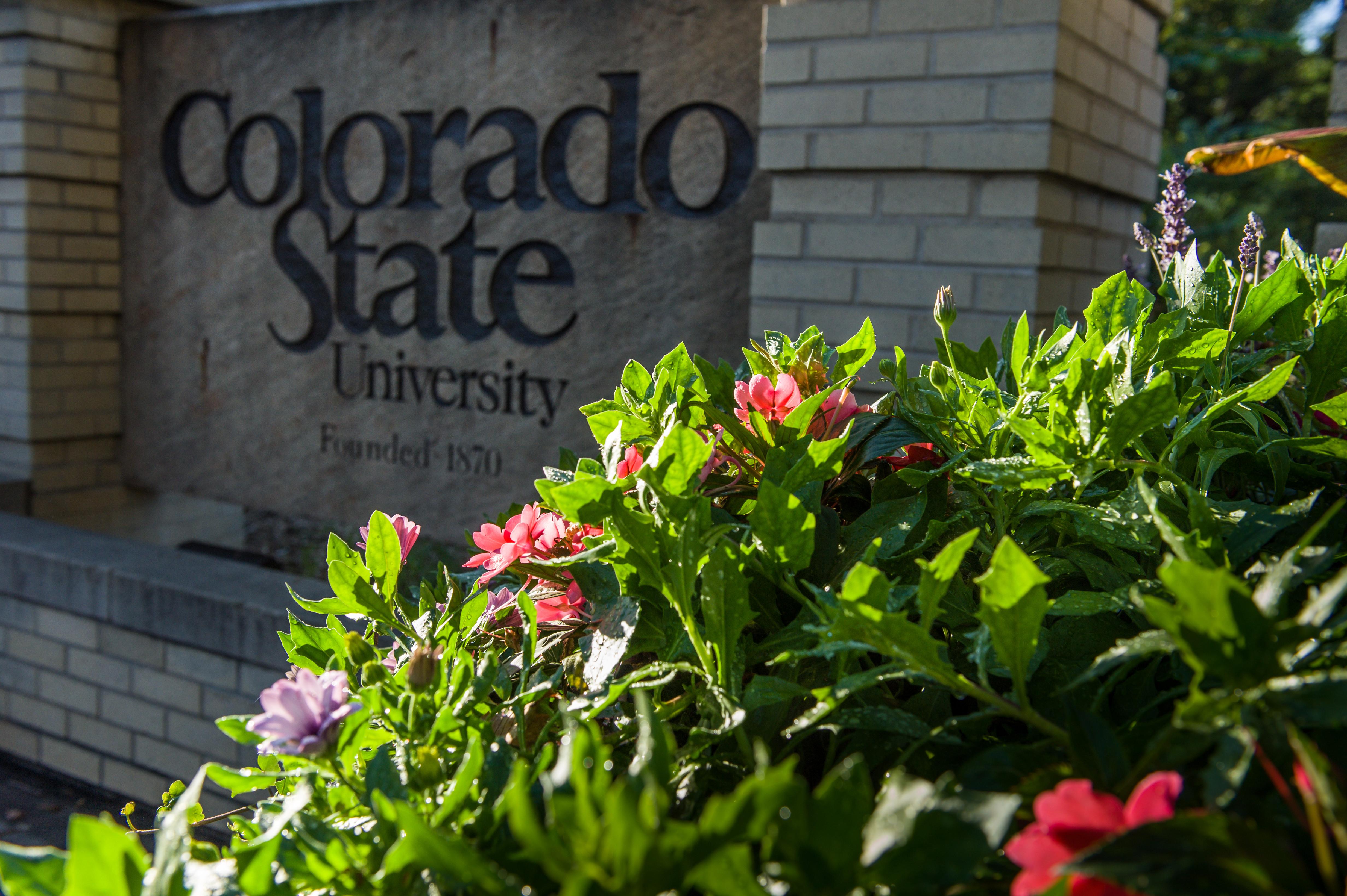 Photo: CSU sign 2