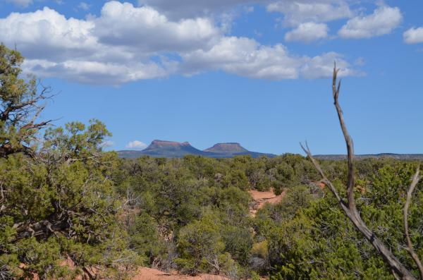 A uranium company that lobbied the Trump administration to reduce the size of Bears Ears National Monument has also petitioned the government to require power plants source a quarter of their uranium from domestic mines.