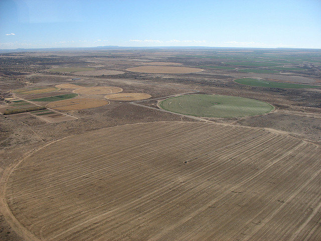Farmers Rethinking Plans Due To Drought
