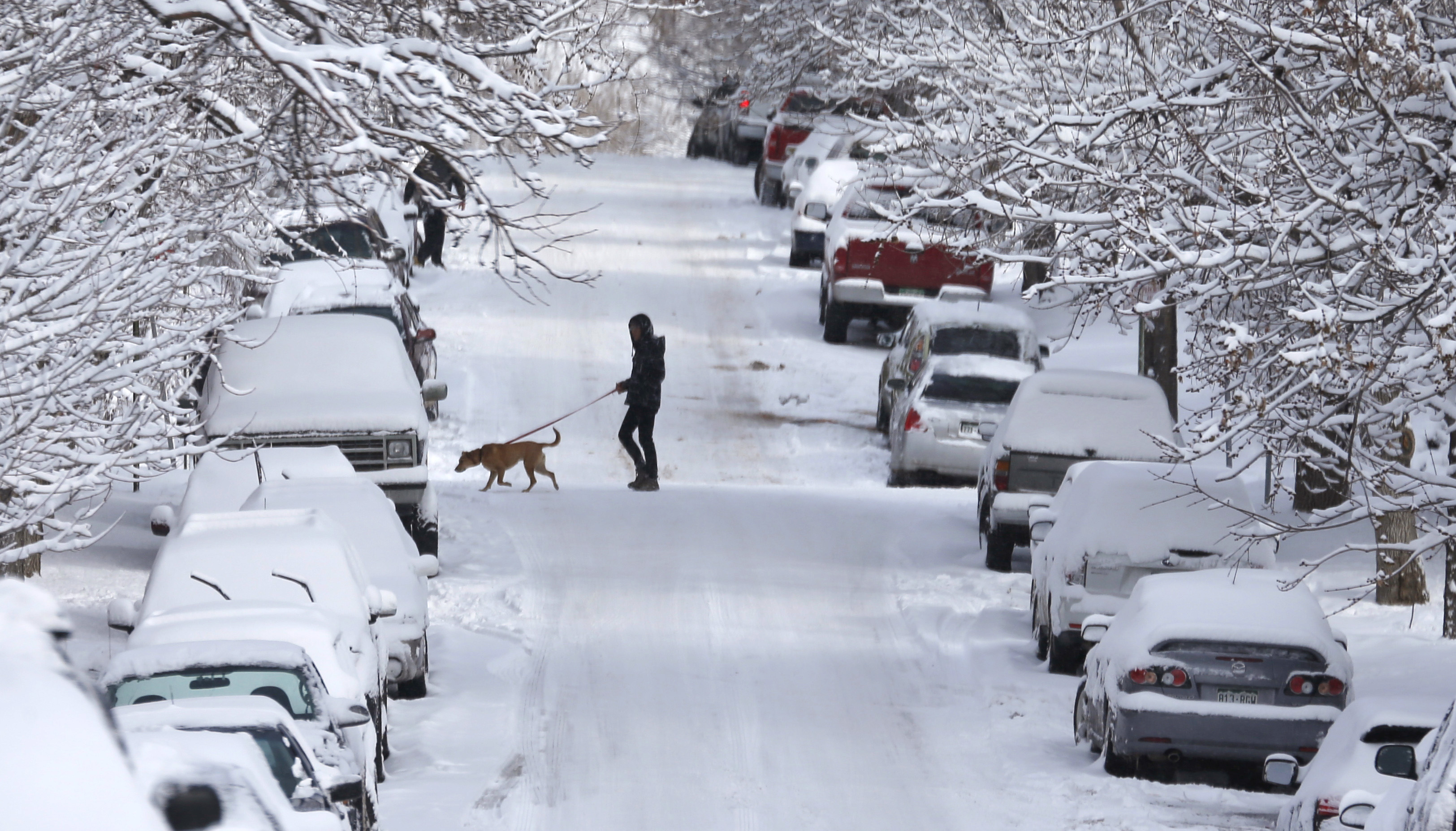 Photo: Snow in Denver on Feb. 26 (AP Photo)