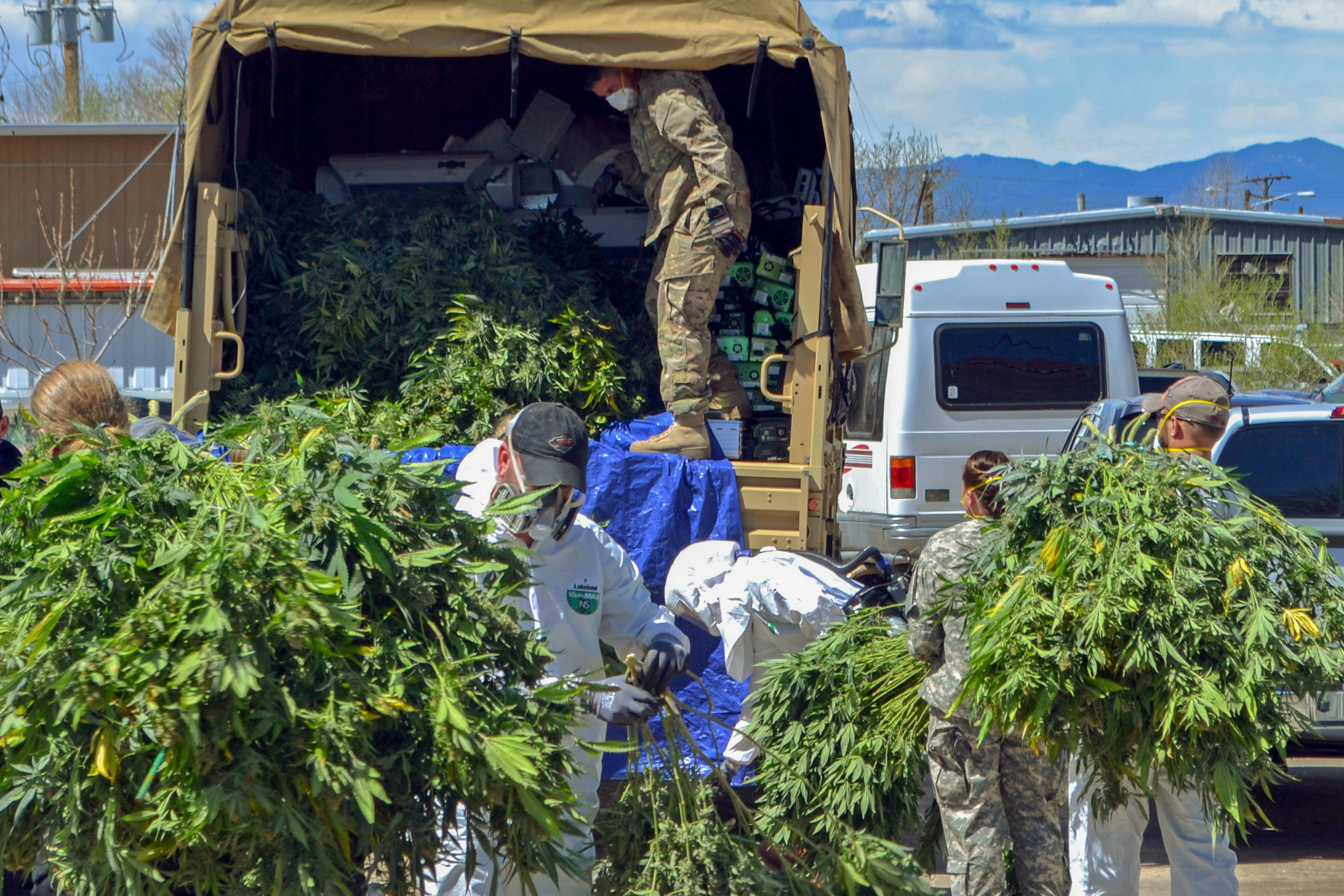 Photo: Marijuana Black Market Busts 1 | Denver 2016 Bust - AP