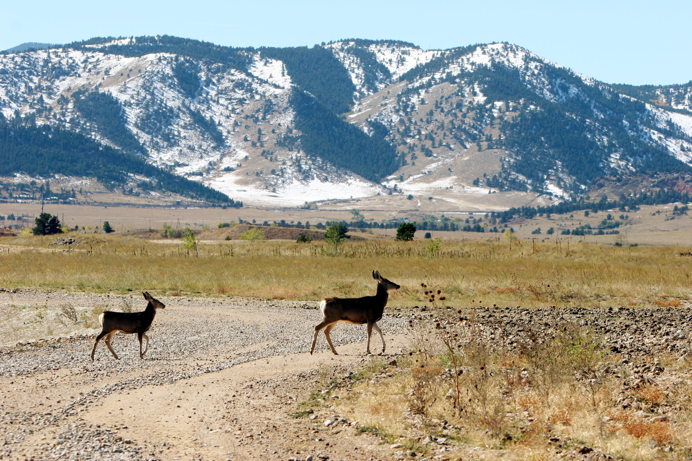 Photo: Rocky Flats site near Golden (AP Photo)
