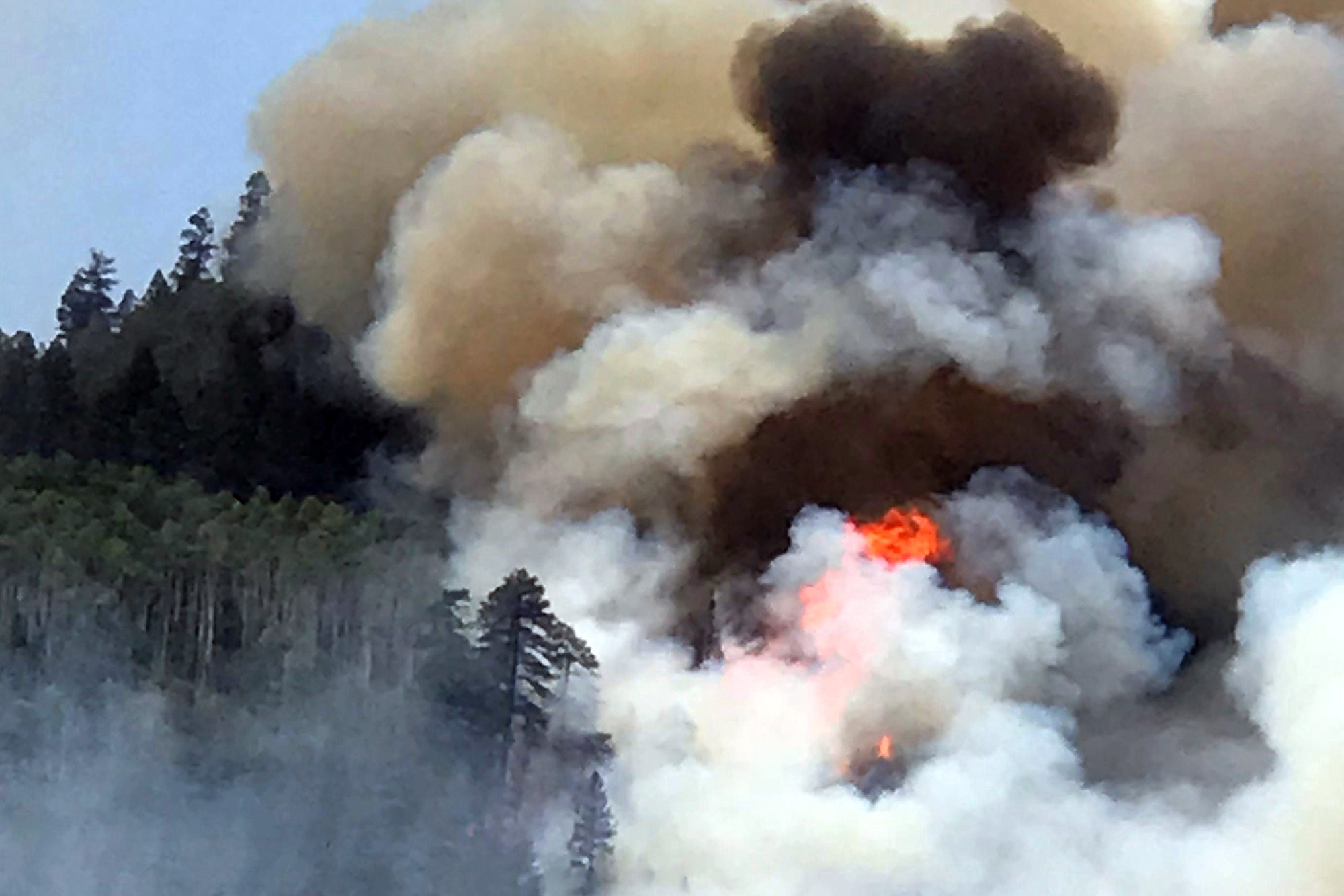 Photo: Colorado Wildfire 416 Fire (AP)