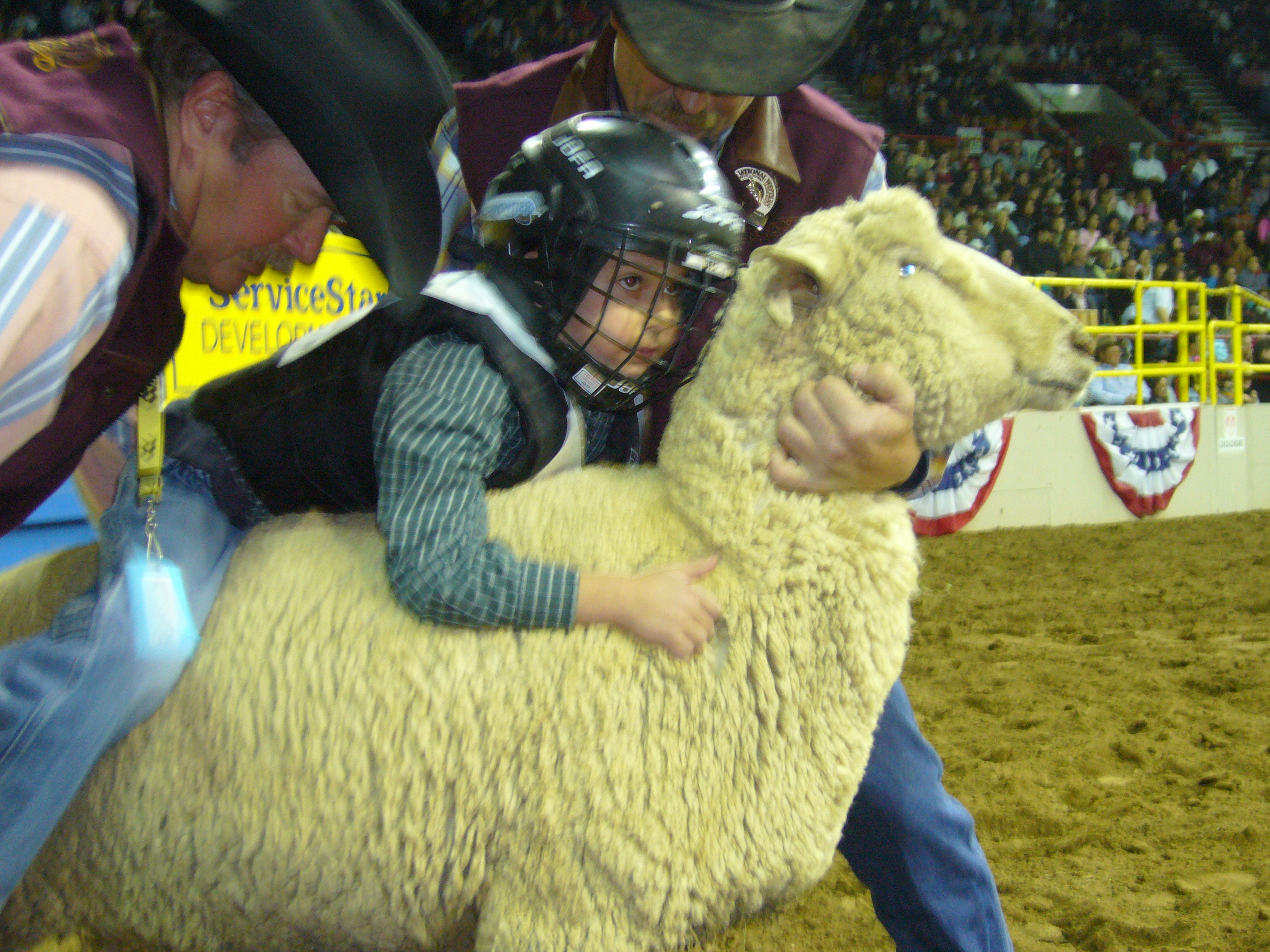 Photo: Mutton buster Asher Kark