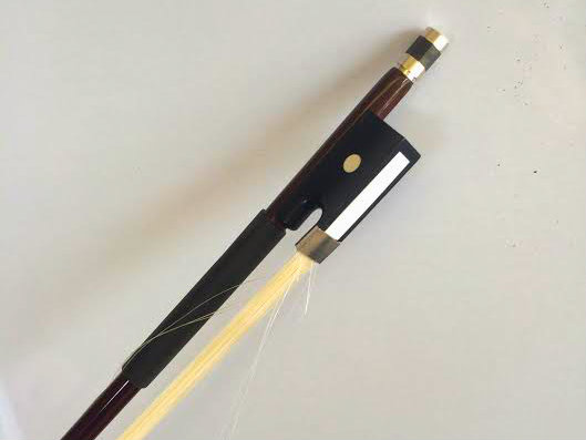 10 Facts About The Horsehair On A String Player's Bow