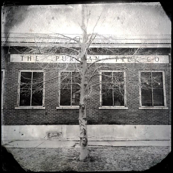The Puritan Pie Co.