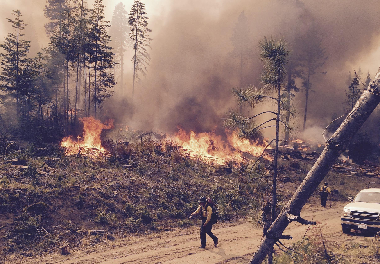 Photo: Cougar Creek fire