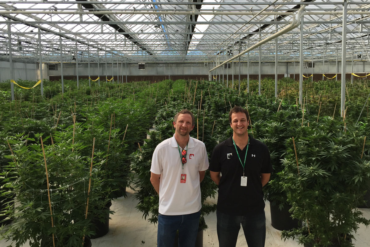 Photo: Kwesell Brothers Pueblo County Pot Cultivation Facility