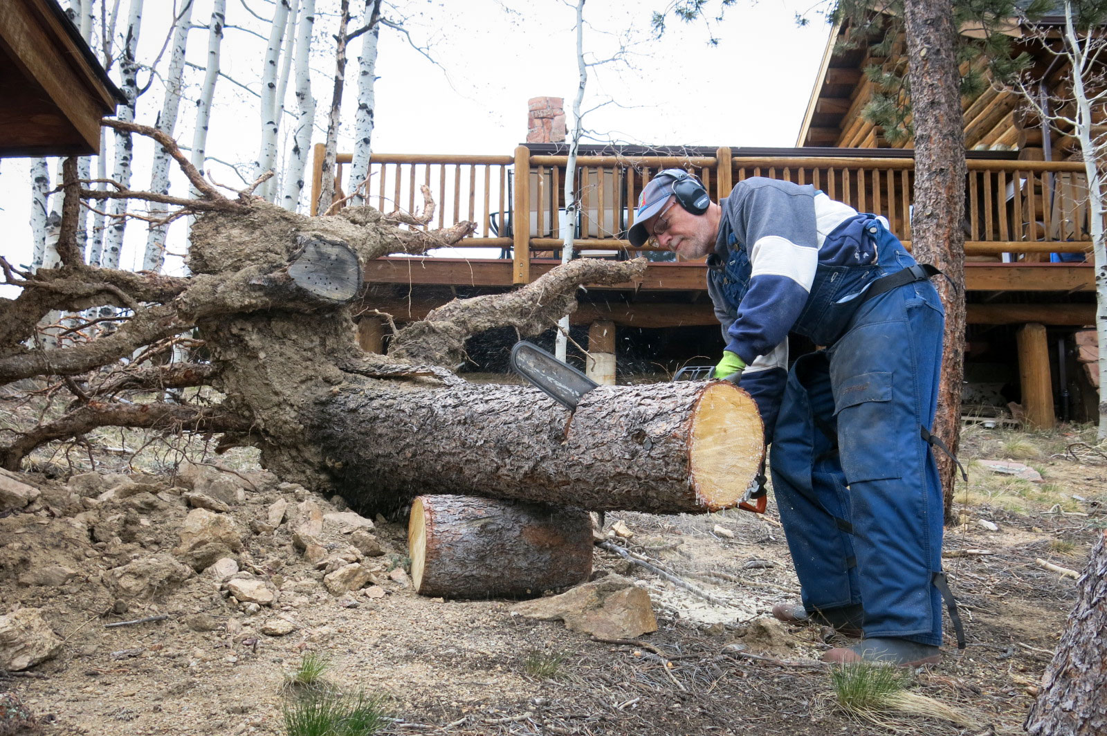 Photo: Wildfire Prep 2 | Chainsaw - GHood