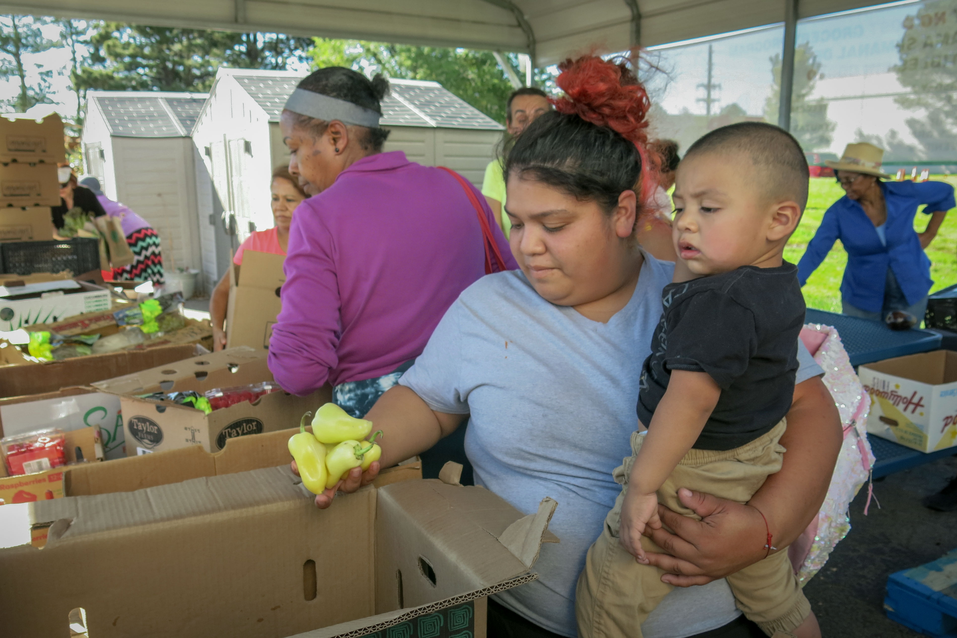 Photo: Denver Food Ballot 4 | Josephina Duron - JDaley