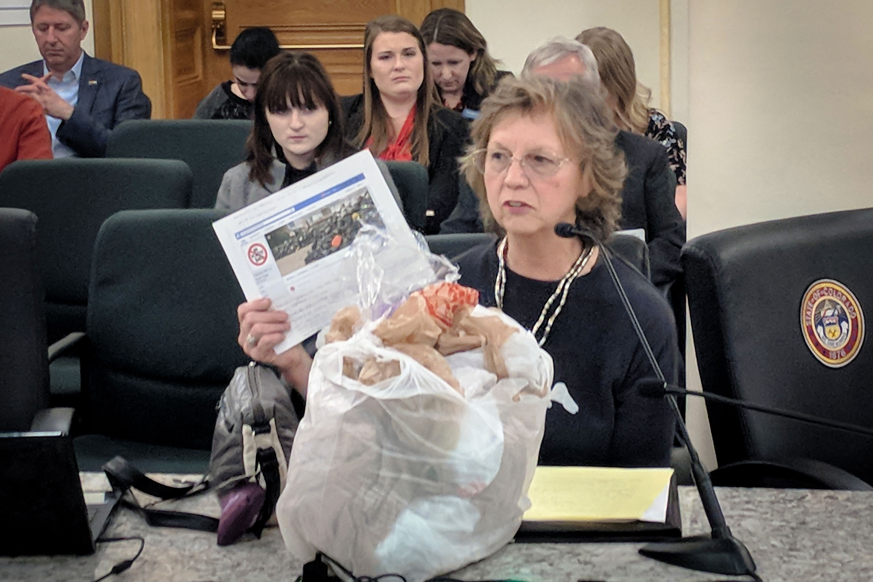Photo: Affordable Housing Bag Tax | Committee Testimony - SBrasch