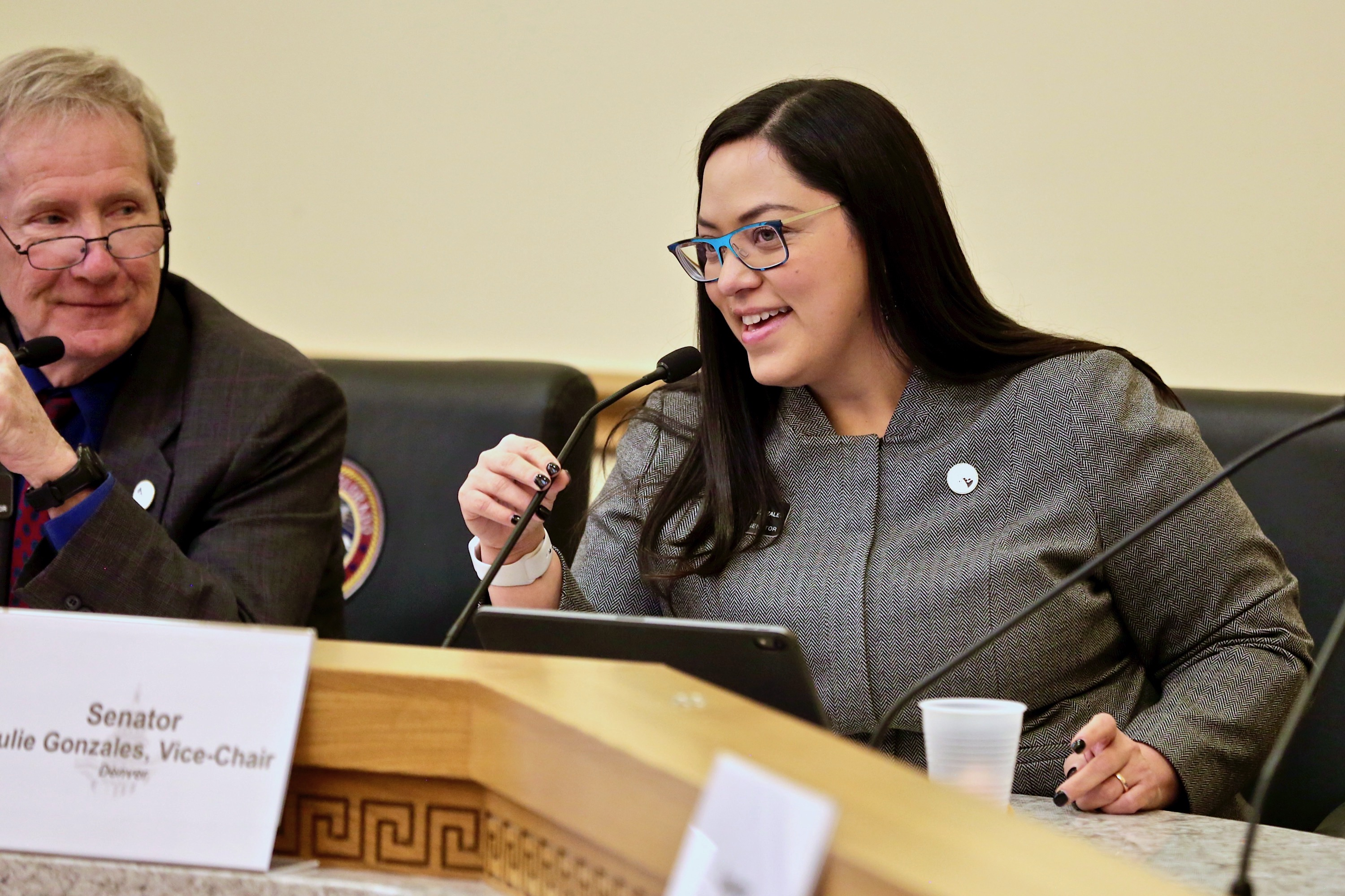 <p>Democratic state Sen. Julie Gonzales, one of two Senate sponsors of a bill to repeal the death penalty in Colorado, questions former Arapahoe County District Attorney George Brauchler, during a Judiciary Committee hearing Wednesday March 6, 2019.</p>