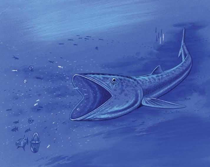 Photo: Fish Fossil Artist View 2 (C/O)