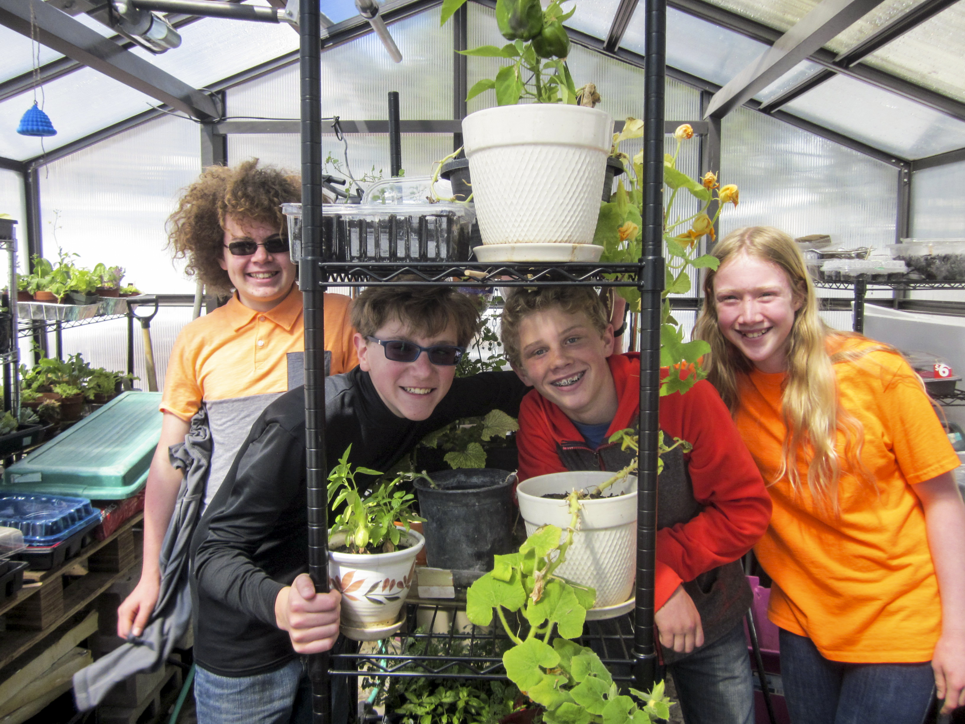 Photo: Mackintosh Academy 2 | In Greenhouse