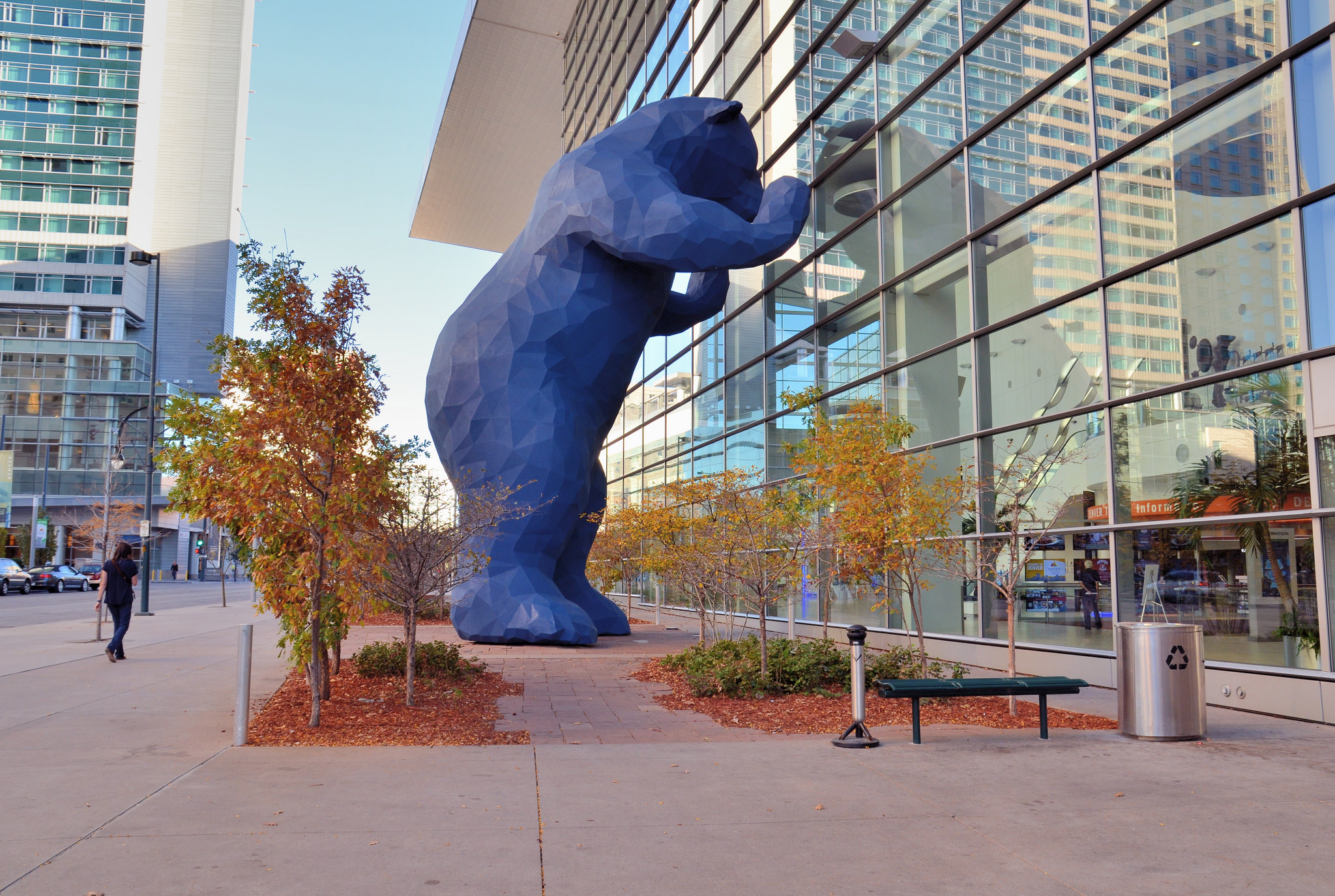 Photo: Denver Blue Bear