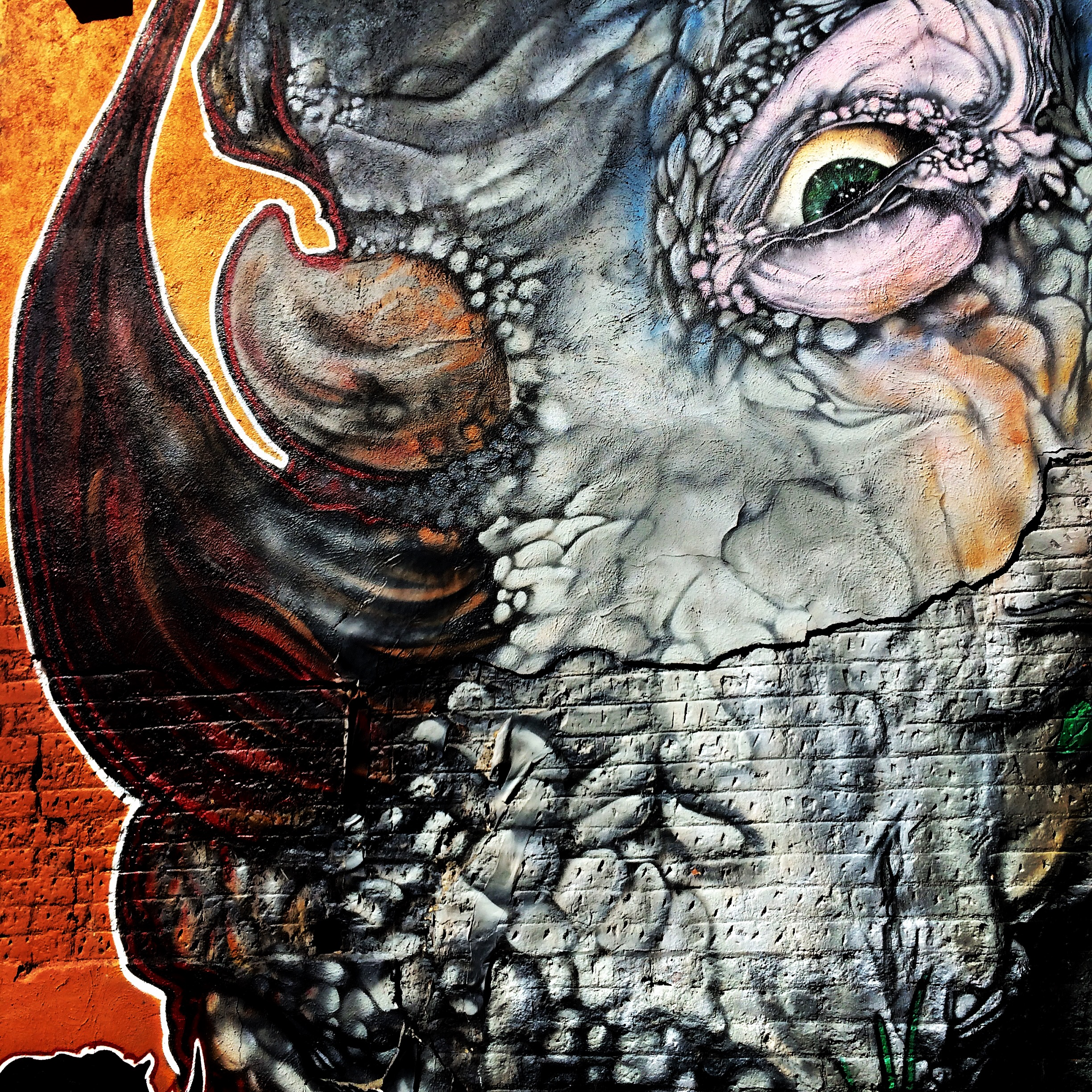 Photo: Rhino mural in RiNo