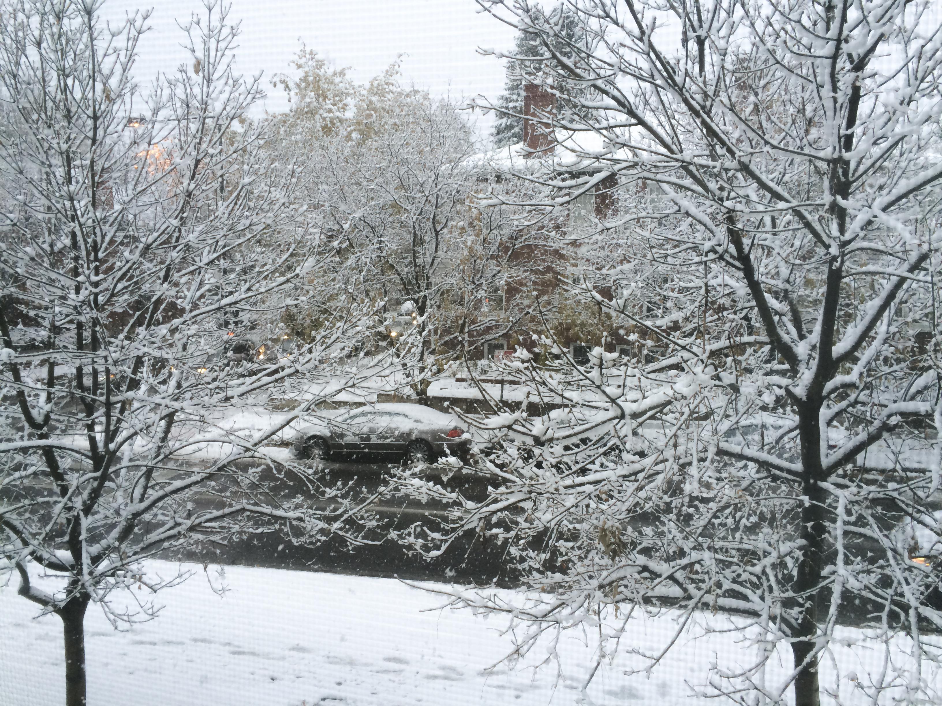 Photo: Snow in Denver (Staff)