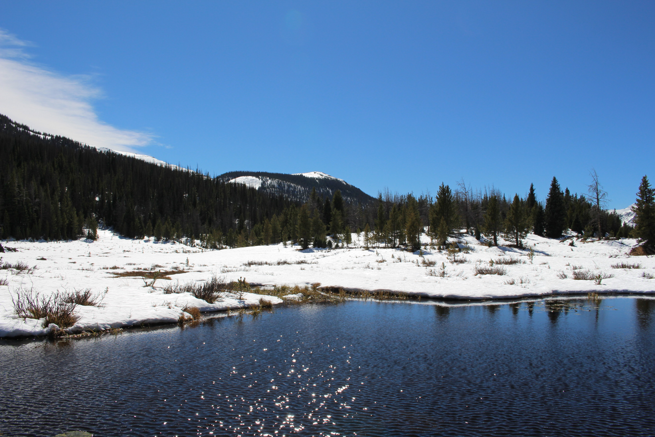 Photo: Colorado River headwaters in Rocky Mountain National Park