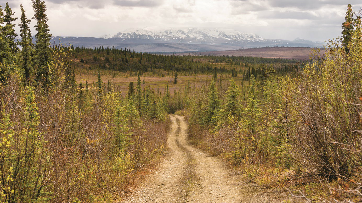 Photo: Into the Wild Stampede Trail in Alaska
