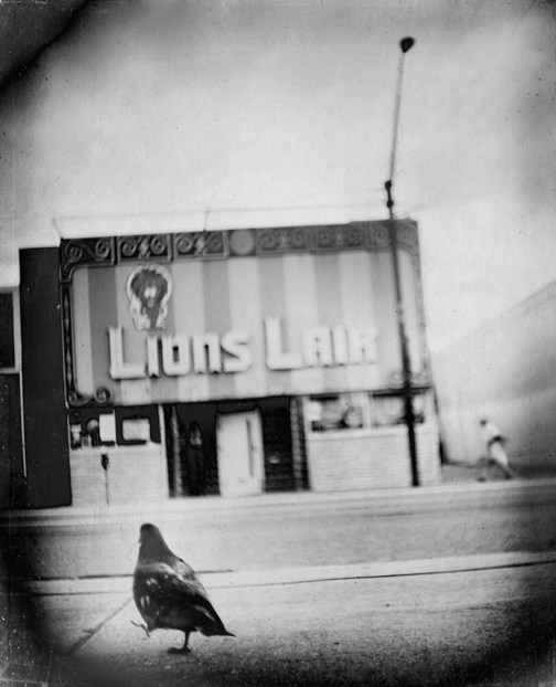 Photo: 36 Views of the Lions Lair