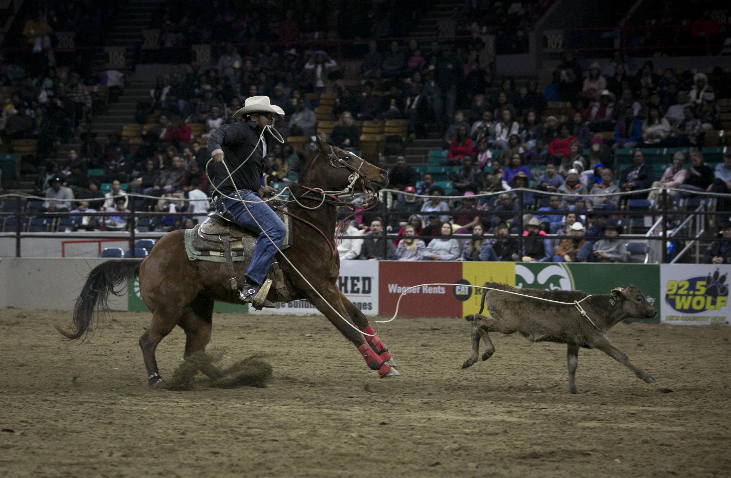 Photo: MLK Rodeo 4 | Lasso