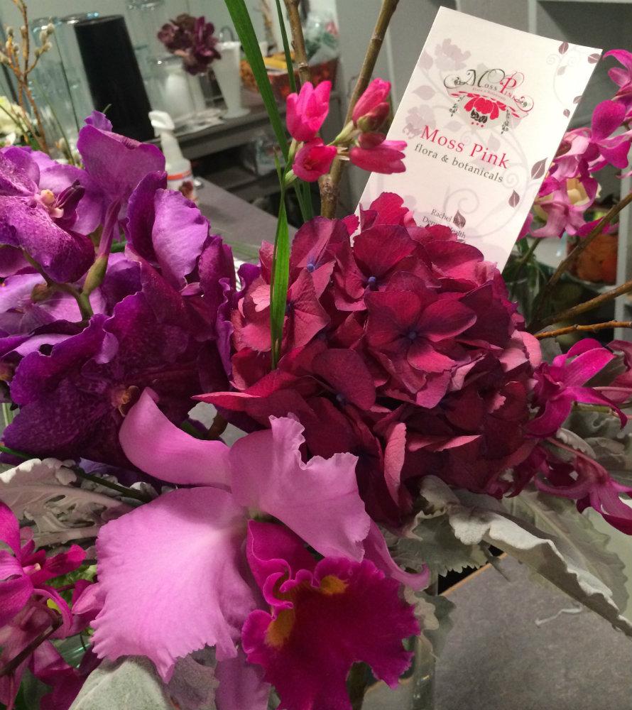 photo: Moss Pink flowers