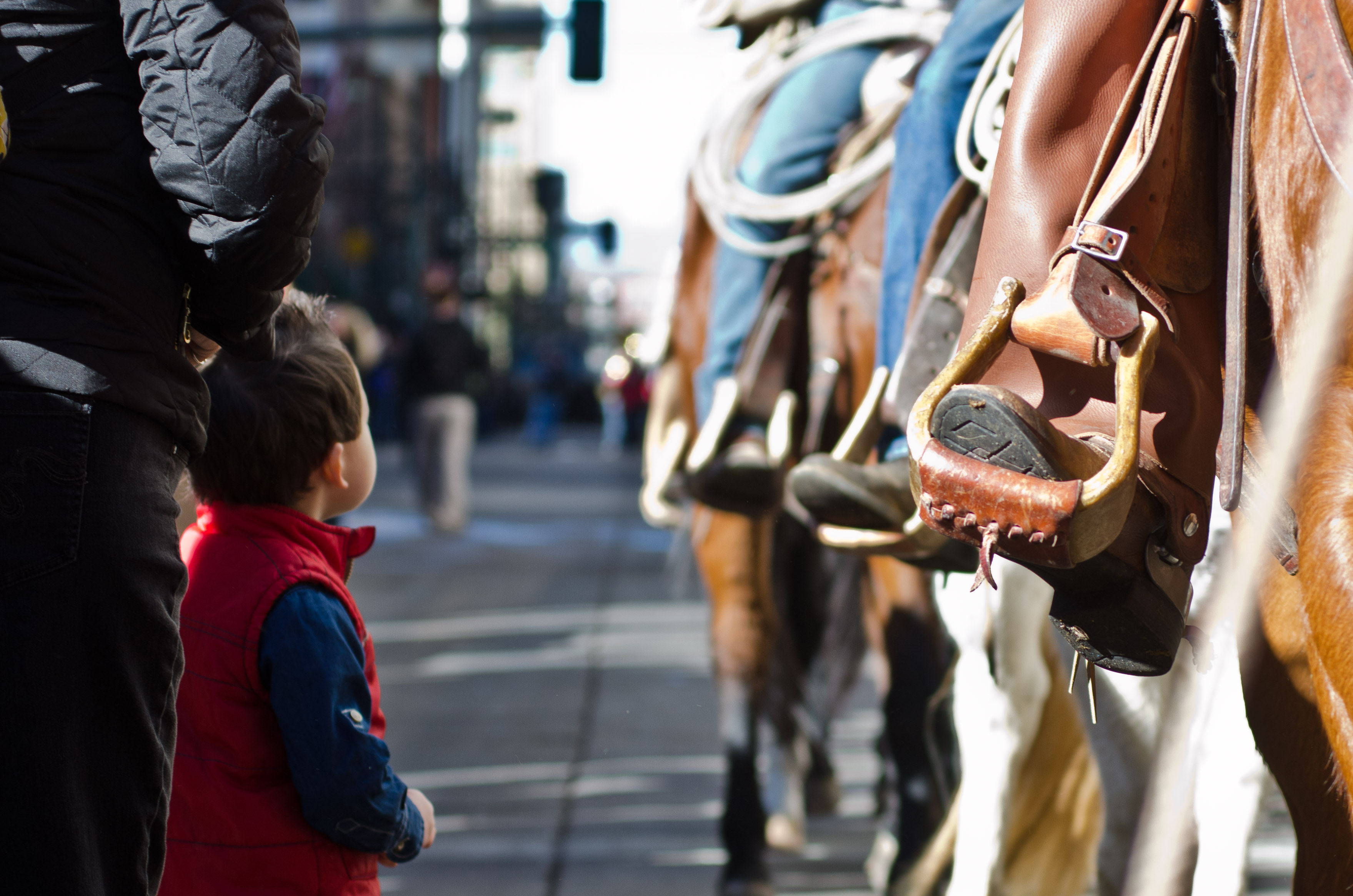 Photo: Western Stock Show parade 8