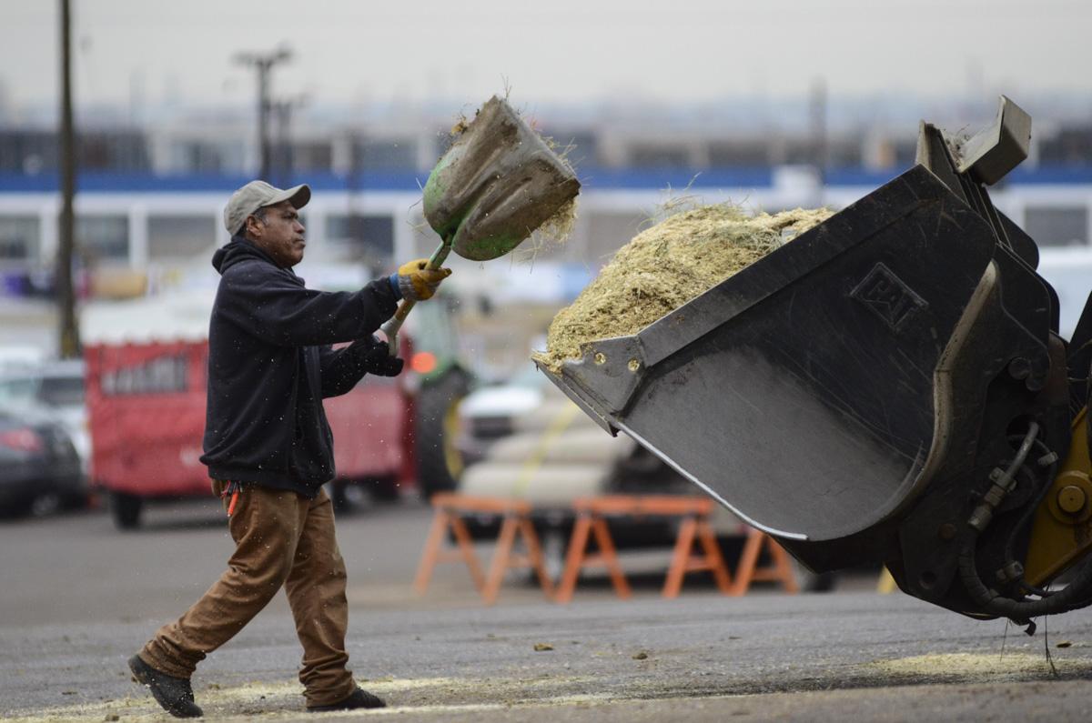 Photo: Stock Show 3 shoveling