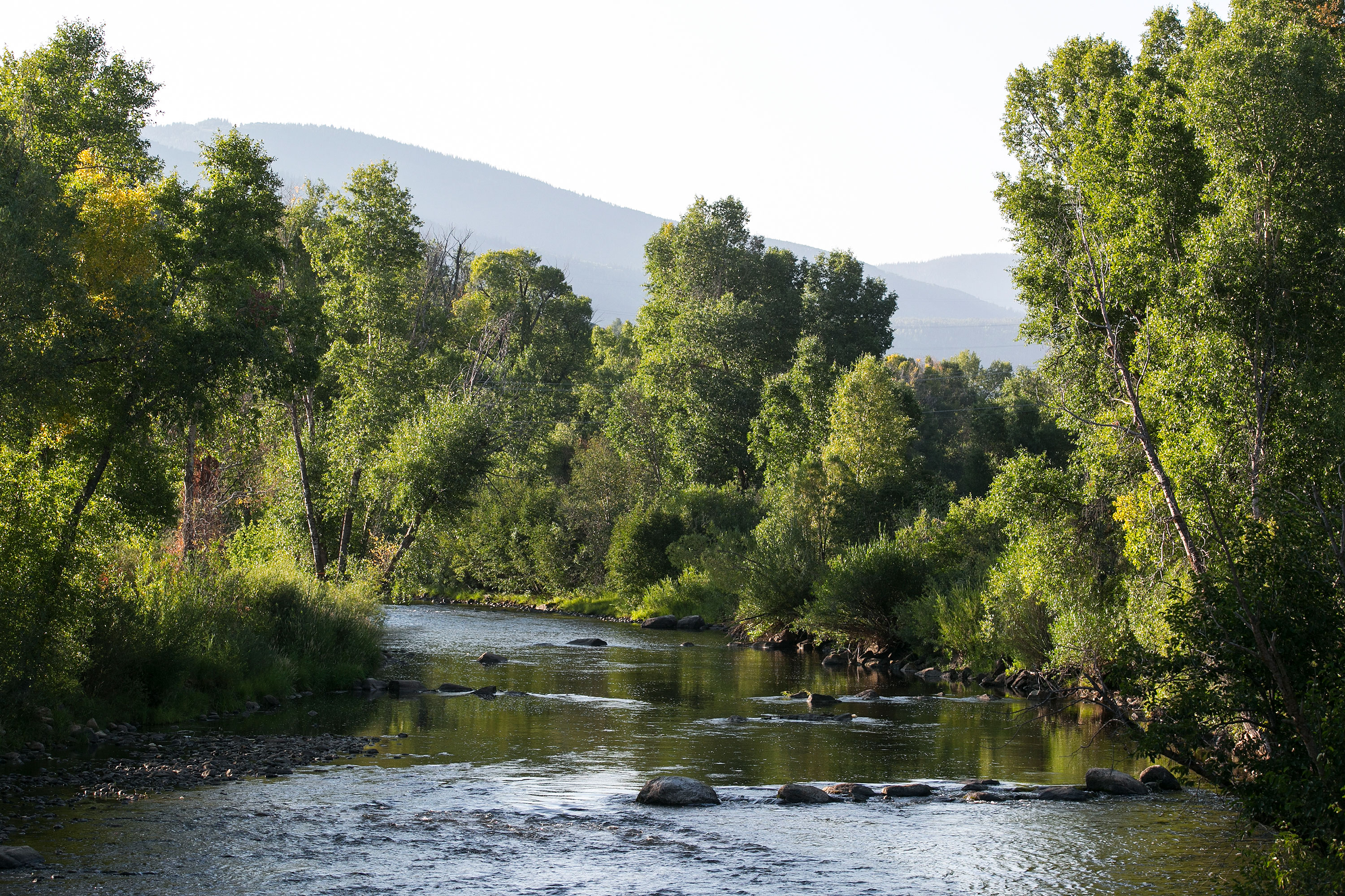 Photo: Yampa River, Steamboat Springs, Summer