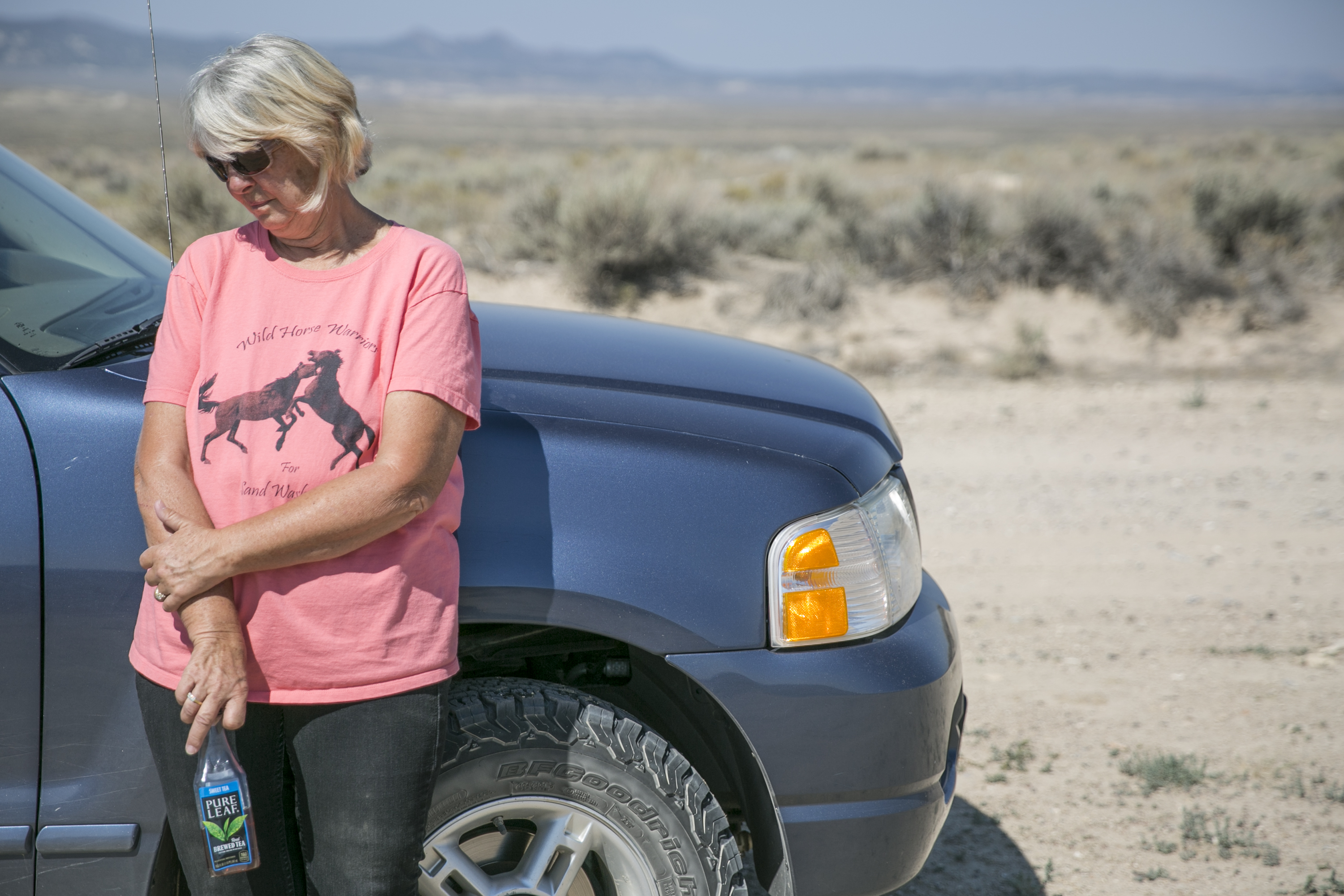 Photo: Election Road Trip Highway 40 36 | Sand Wash Wild Horse Management Area Cindy Wright