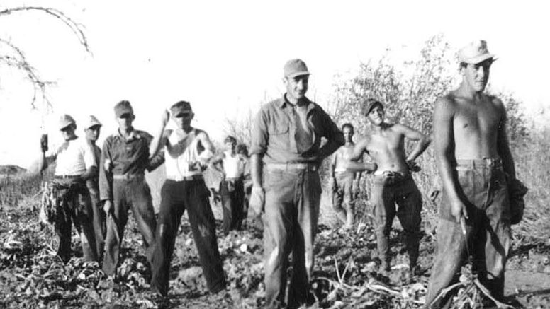 Photo: POWs on Niwot farms