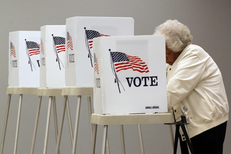 Photo: Person Voting