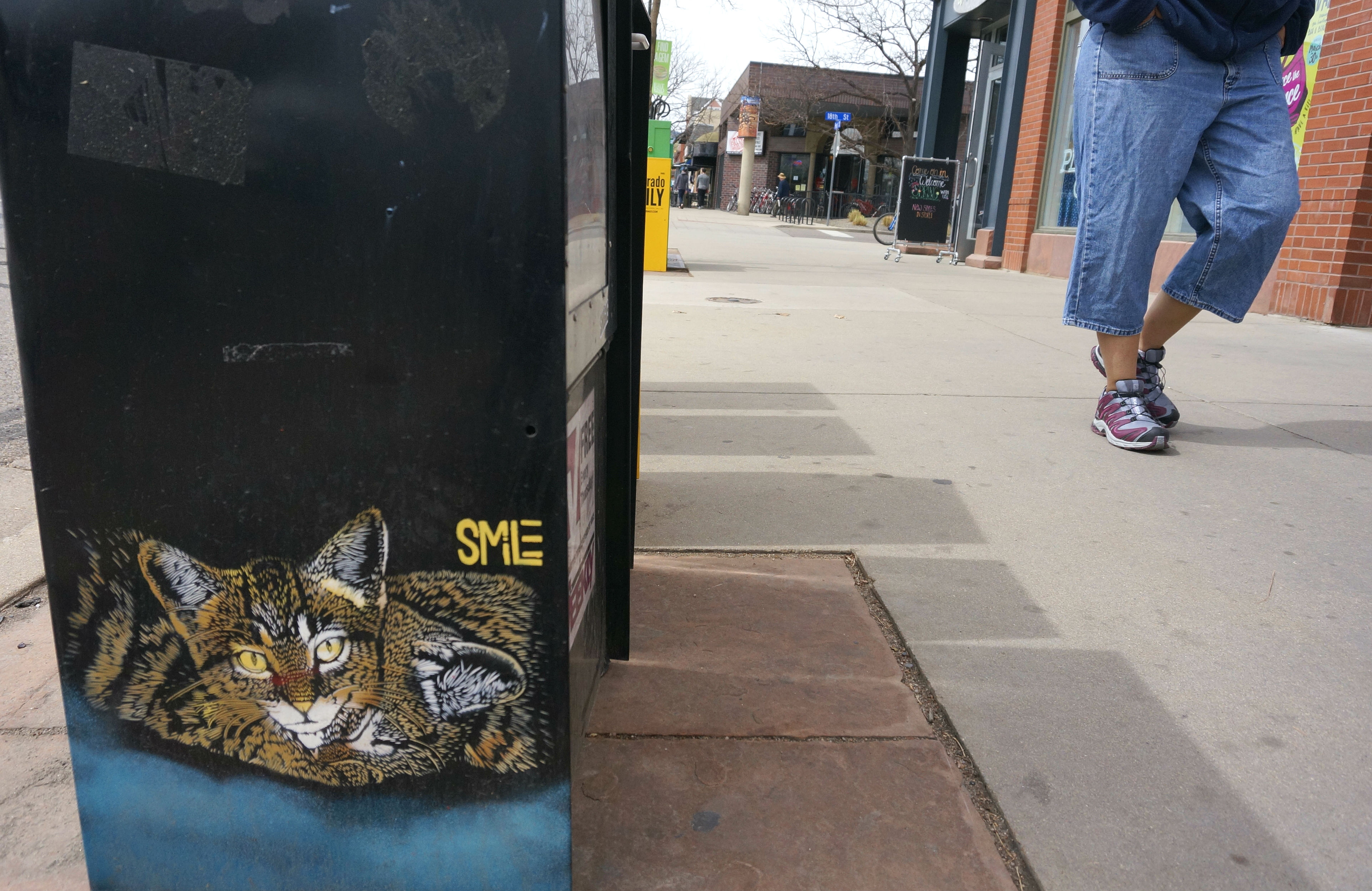 Photo: SMiLE artwork, Cat, Pearl Street, Boulder